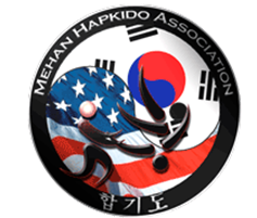 Mehan Hapkido Association